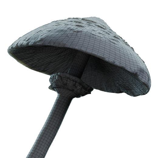 parasol_mushroom_05_09