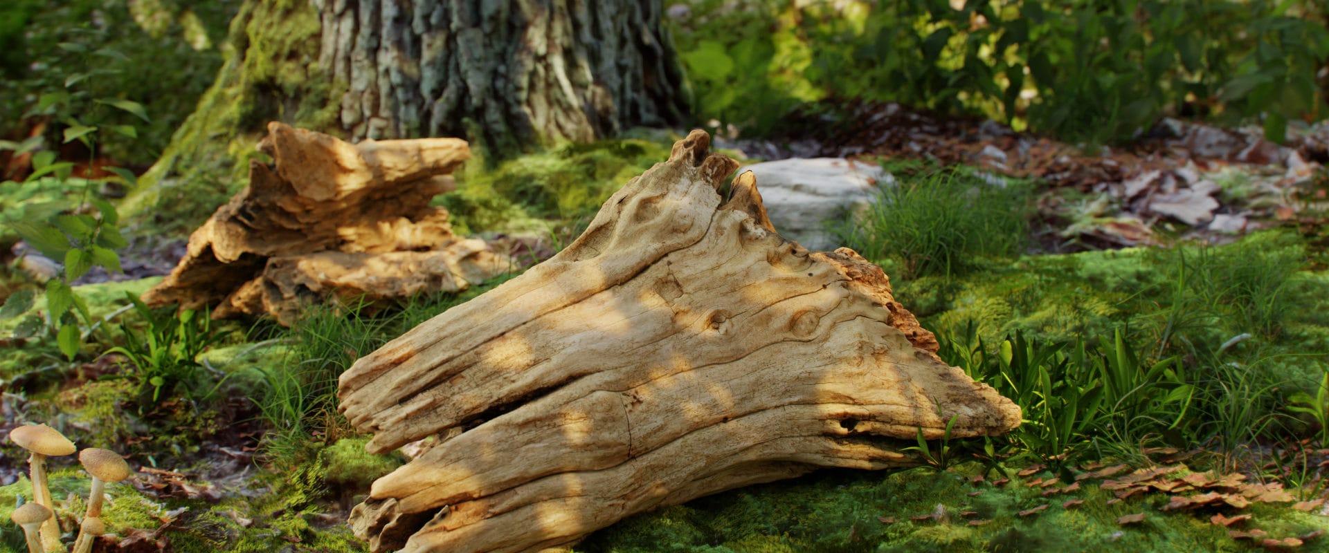 Wood piece_360°_7_58_