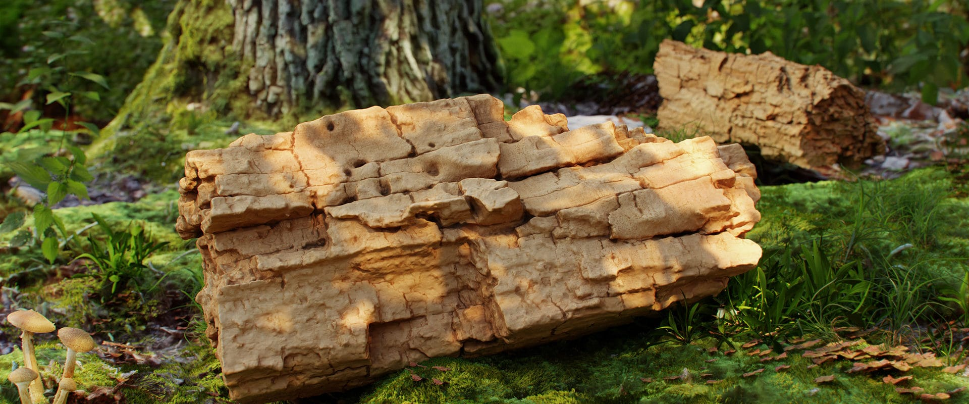 Wood_piece_360_4_27_
