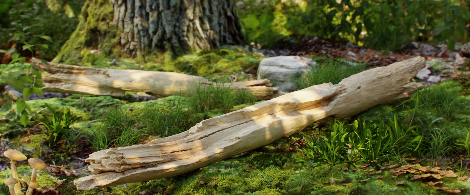 Wood_piece_360_5_45_