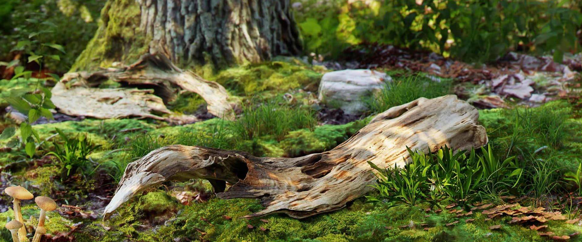 wood_01