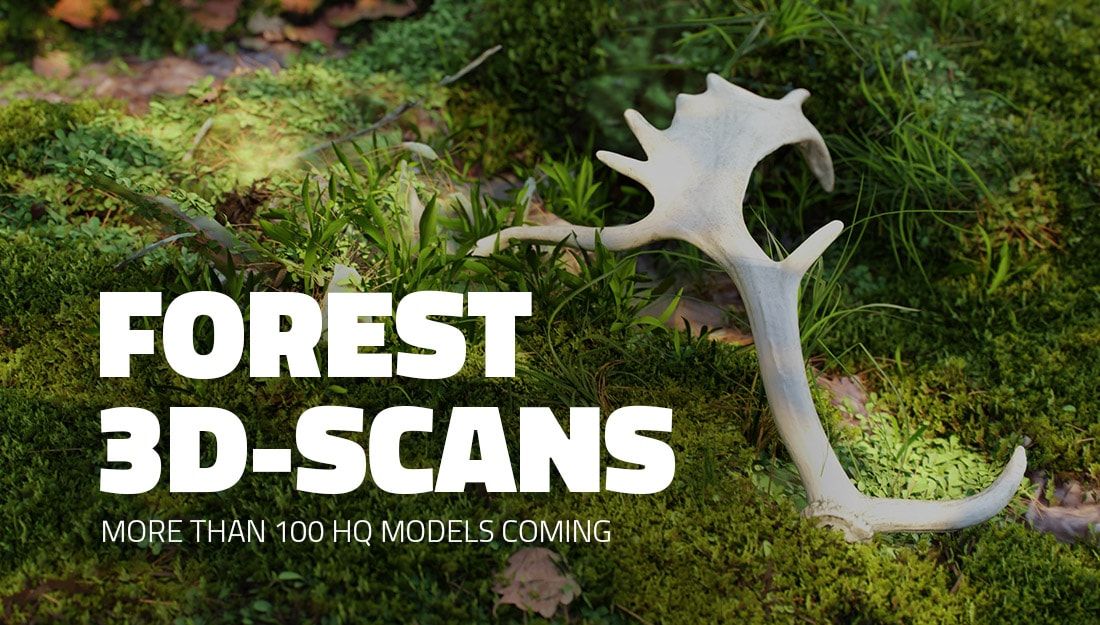 forest 3d-scans