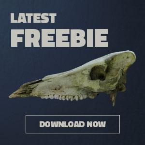 3d-scan freebie