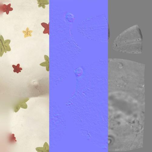 bird_egg_textures