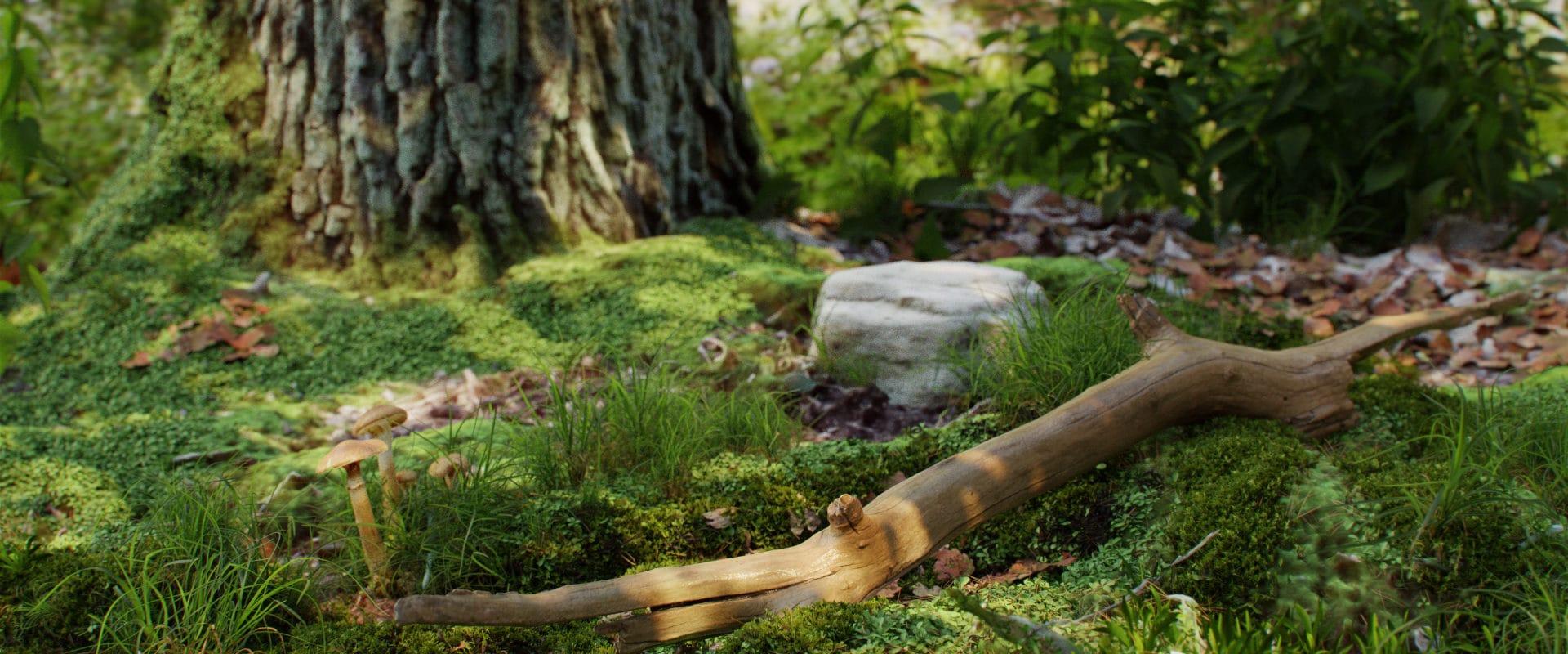Wood_piece_360_17_13